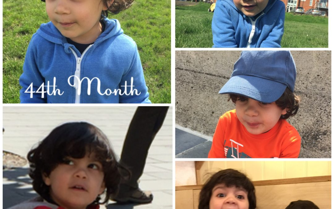 44 months Aydi and more wonderful by the month!